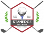 Stanedge Logo