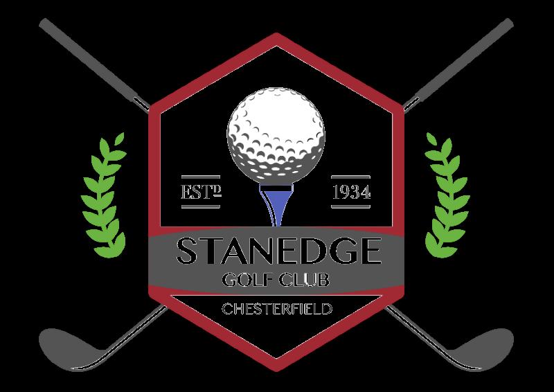 Stanedge Logo